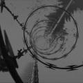 Razor wire study
