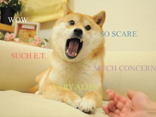 Alien Doge