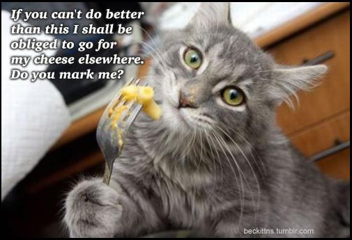 Cheese Kitten speaks