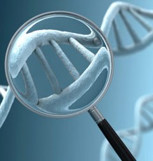 298x232-dna_genetic_test-298x232_dna_genetic_test