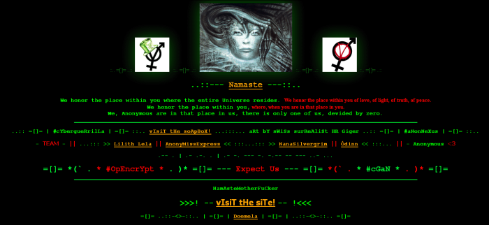 Cyberguerrilla Welcome Page