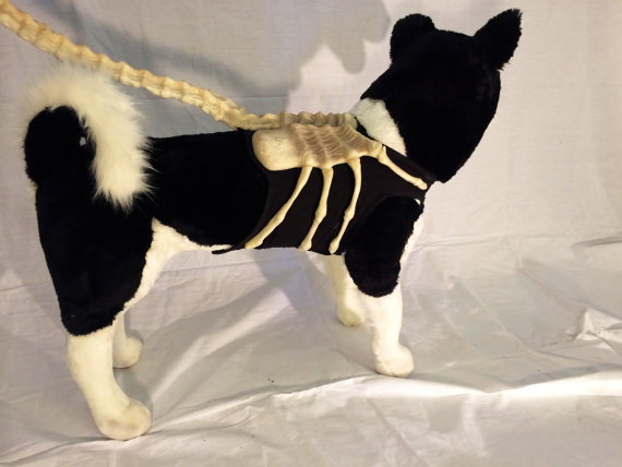 Alien facehugger dog leash