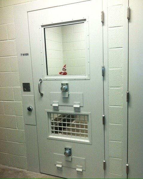 Elf In Custody