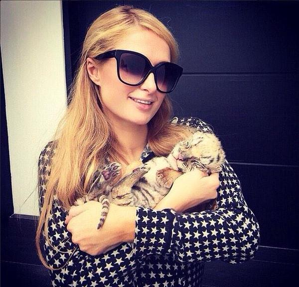 Paris Hilton and Tiger Cub