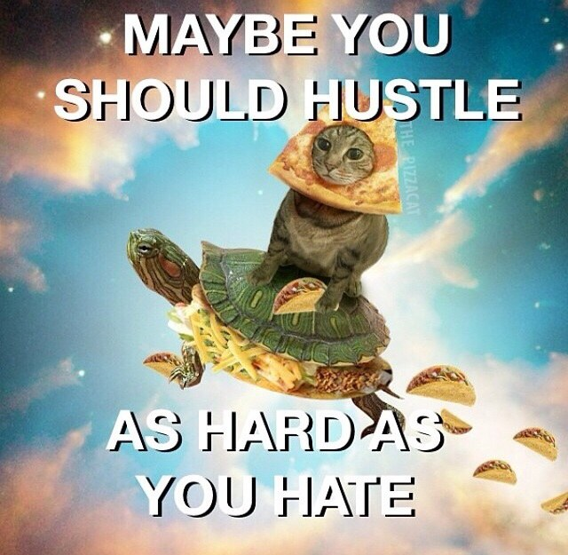 Haters you should hustle