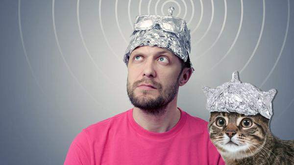 Tinfoil hat and tinfoil cat by Bill D on Twitter