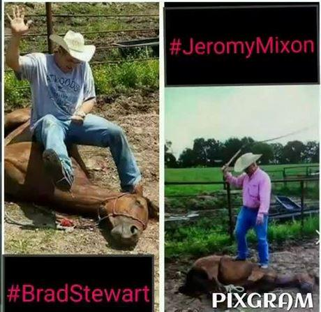 ShowUsTheHorse photo of Brad Stewart via Twitter